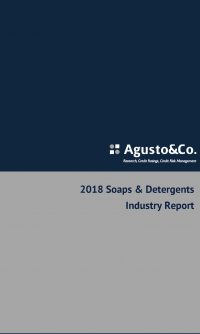 2018 Soaps & Detergents Industry Report